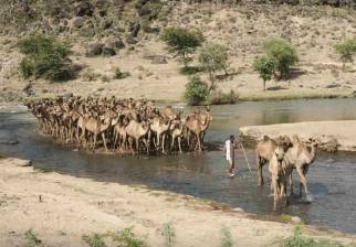 Reducing clean water poverty - Oromia region  featured image
