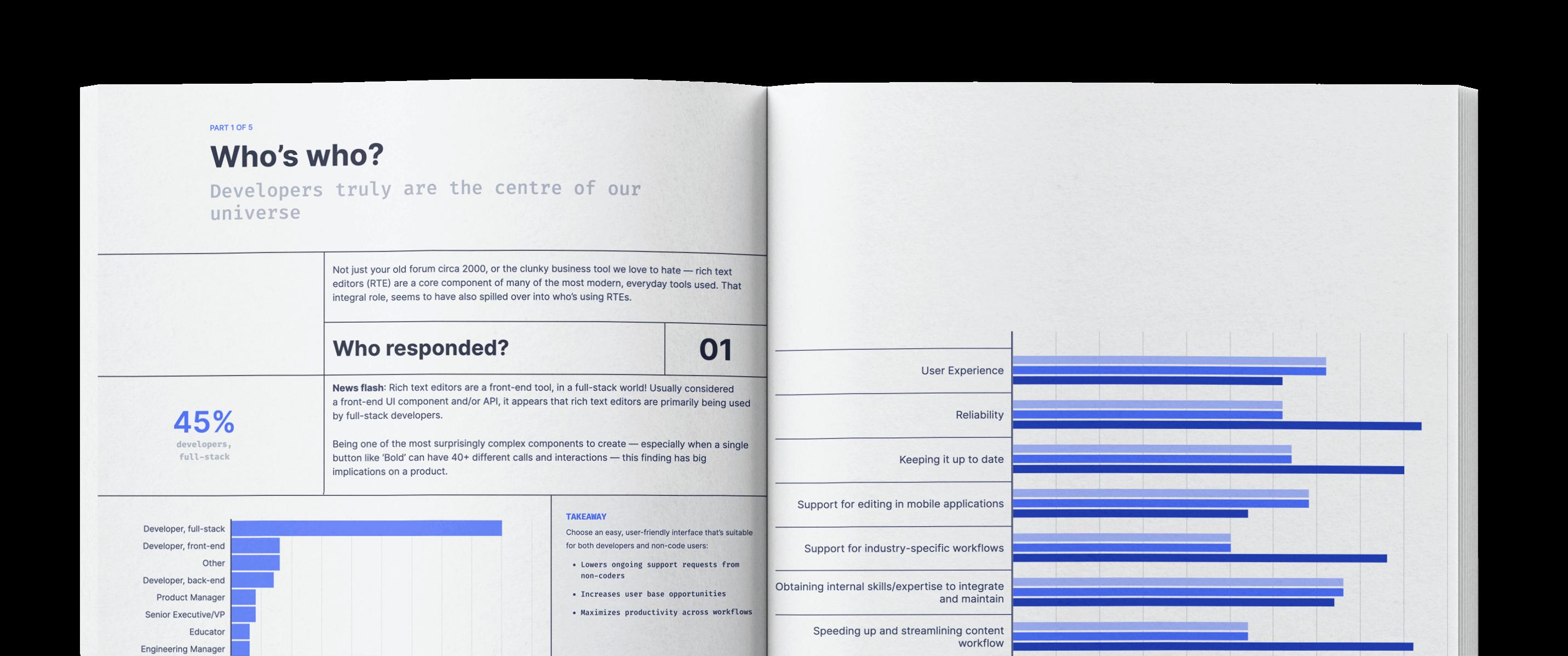 Developer Survey 2021 Mock-up Image