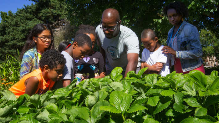 Fruit Science Summer Camp links city kids with the land and each other