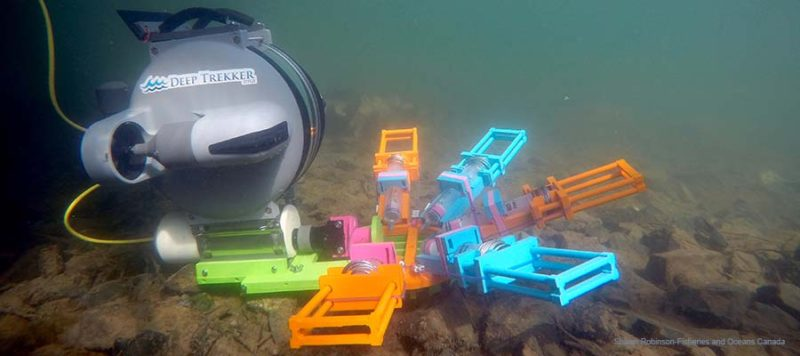 research underwater rov