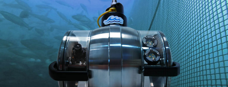 dtpod-aquaculture-surveillance camera