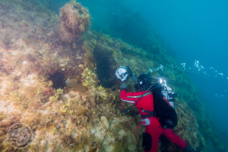 deep-trekker-rov-hms-erebus-franklin-expedition-ship-wreck-14