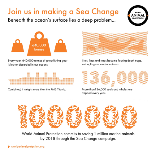 Infographic Sea Change ghost fishing