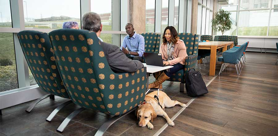 four people meeting in social area with service dog