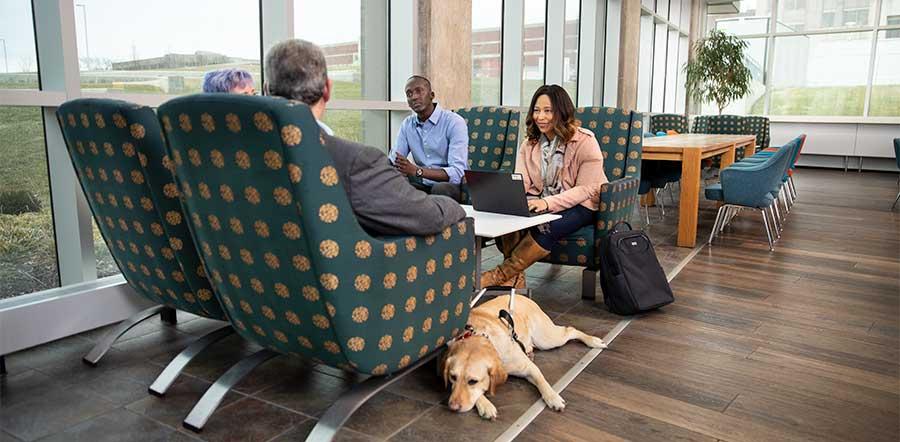 四人在社交区域与服务犬会面