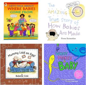 Conception, Pregnancy & Birth Books