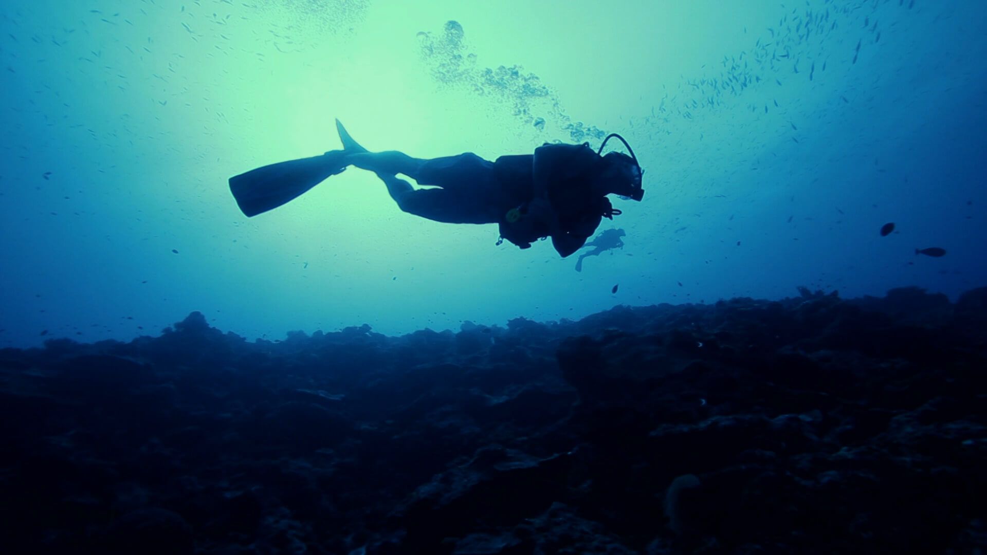 A diver in a underwater surrounding