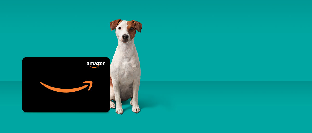 Get an Amazon.ca Gift Card Get an Amazon.ca Gift Card up to $150 with Fido Home Internet 75u and 150u