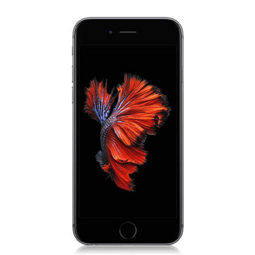 iPhone 6s - Front