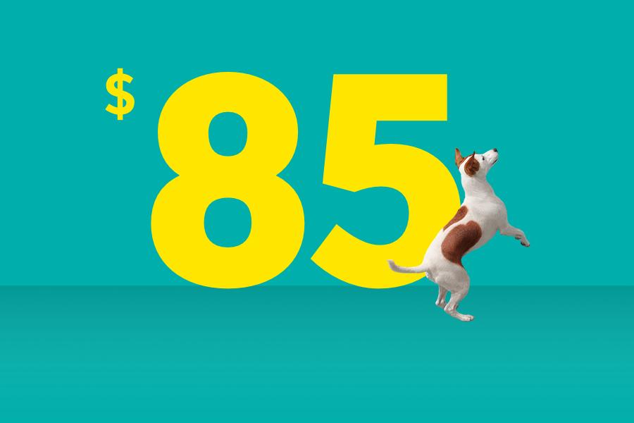 Save $85 Online