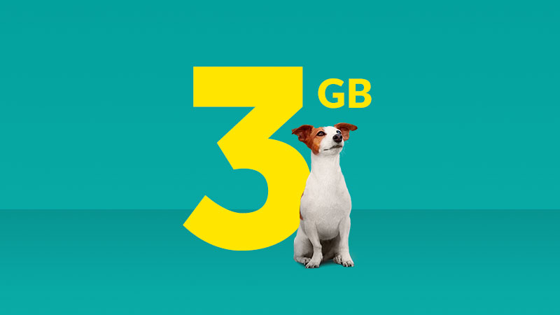 Get a 3GB plan for $40 per month