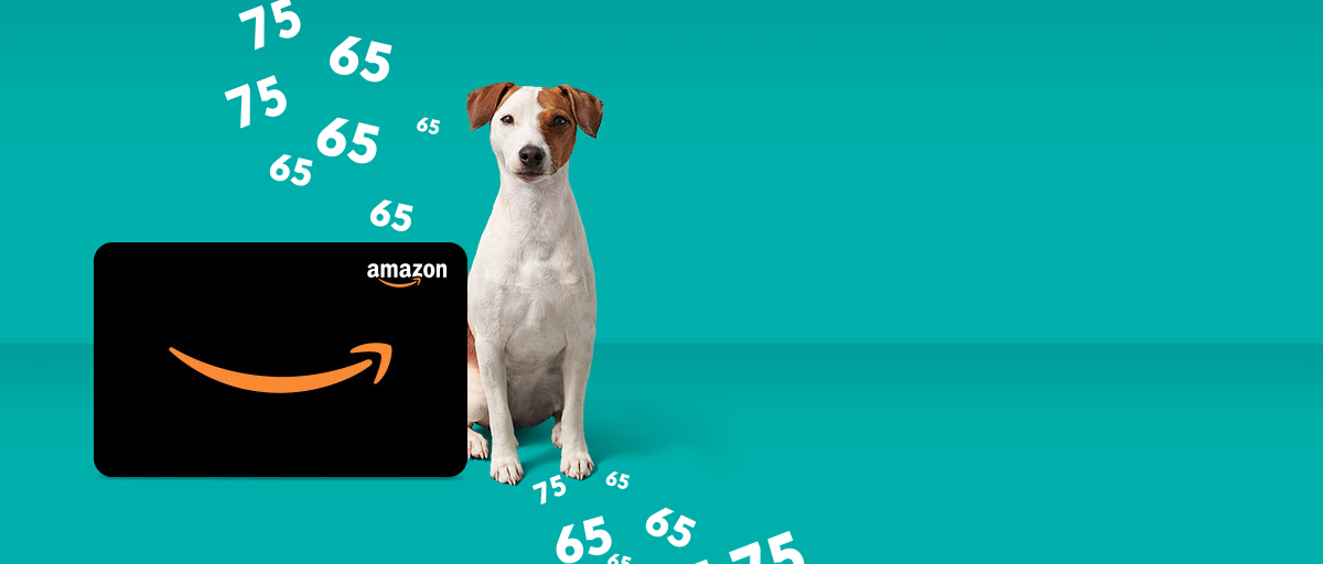 Get an Amazon Gift Card with Fido Home Internet 75u and 150u