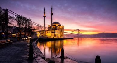 mini_Turkey_