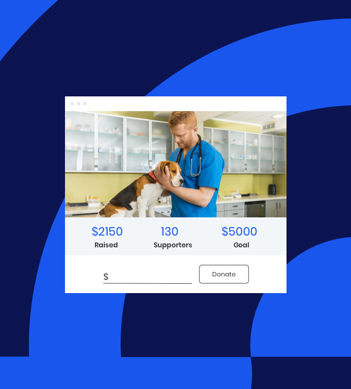 donation screen example with a veterinarian petting a dog