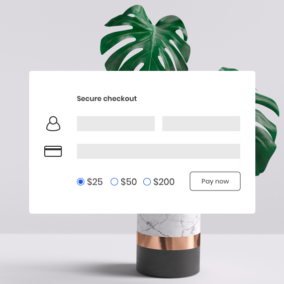secure checkout screen web form