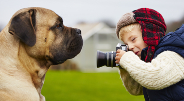 Image of little boy photographing a big dog