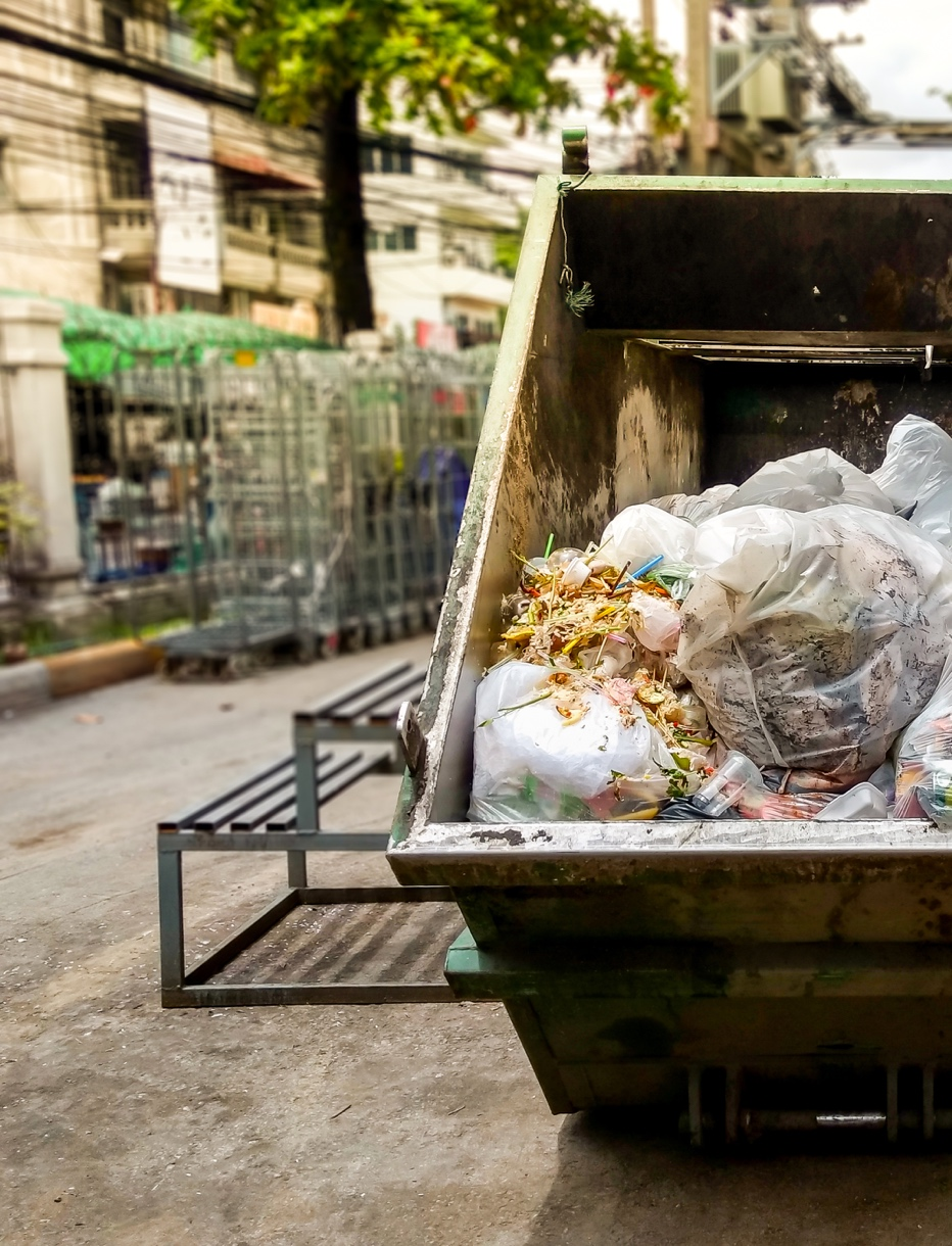The Food Waste Epidemic... And What You Can Do About It