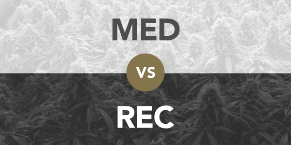 Recreational vs. Medical Cannabis  thumbnail