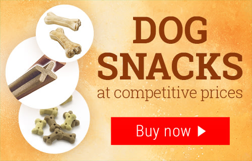 Big Discounts On Dog Food Cat Food Pet Accessories And