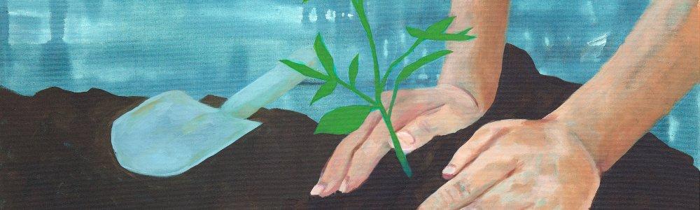 Zwei Hände setzen eine Pflanze in Erde ein