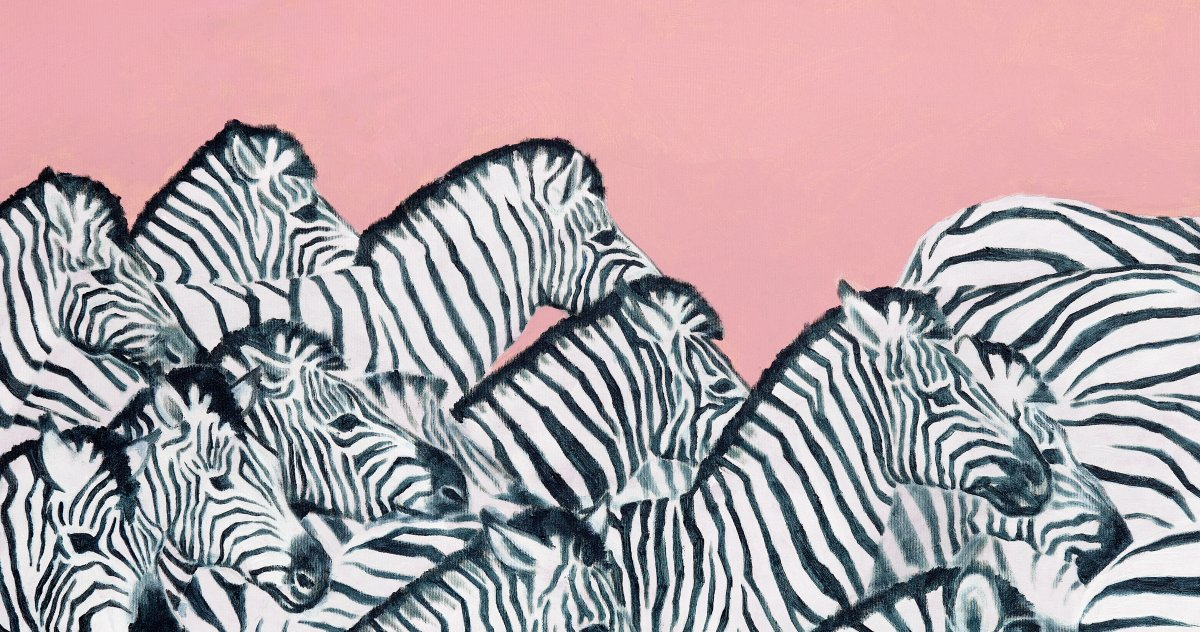A herd of Zebras in front of a rose background