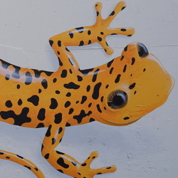 thumbnail of South Yard Geckos Mural
