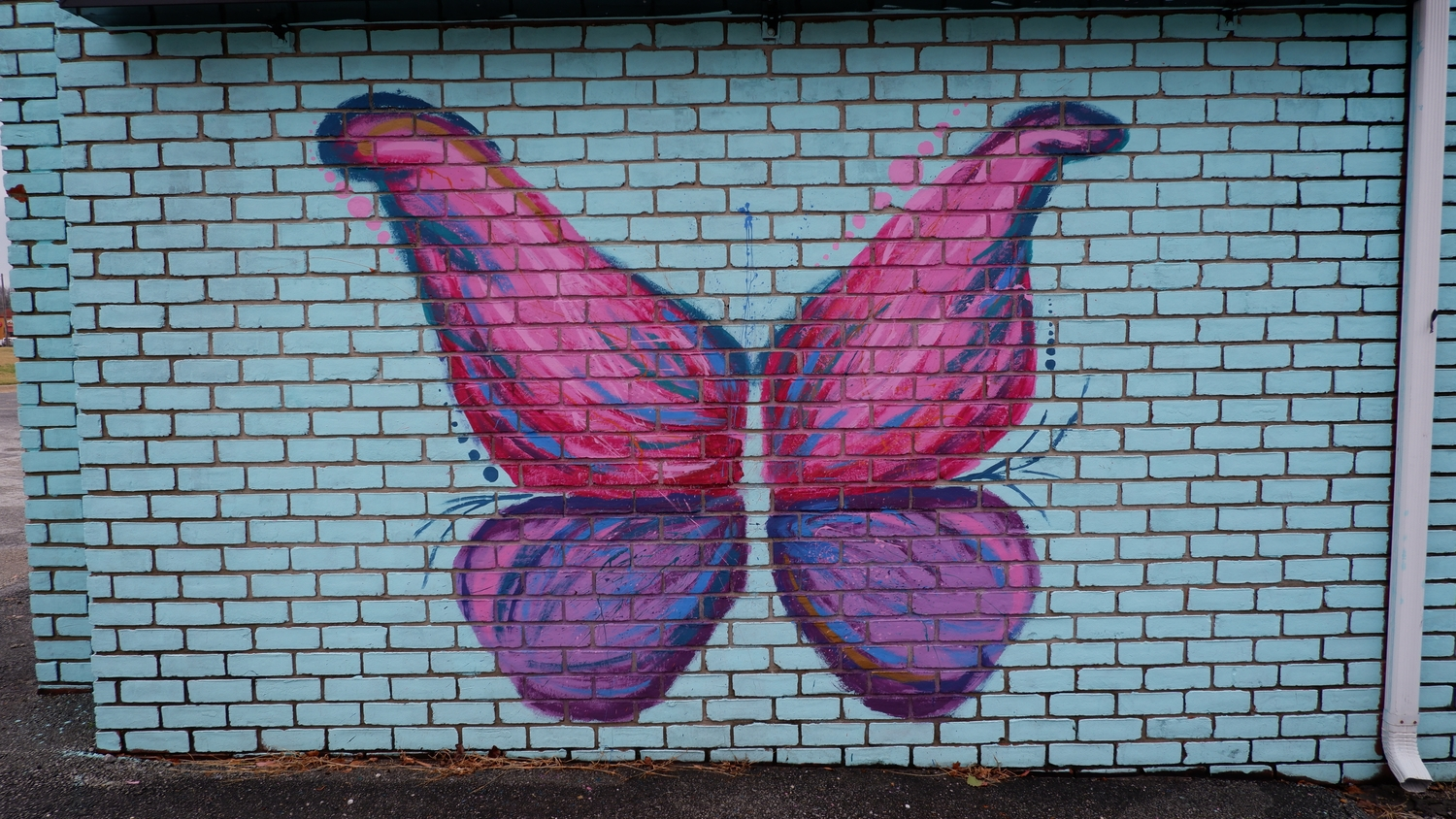 image of Games Shop Butterfly Mural