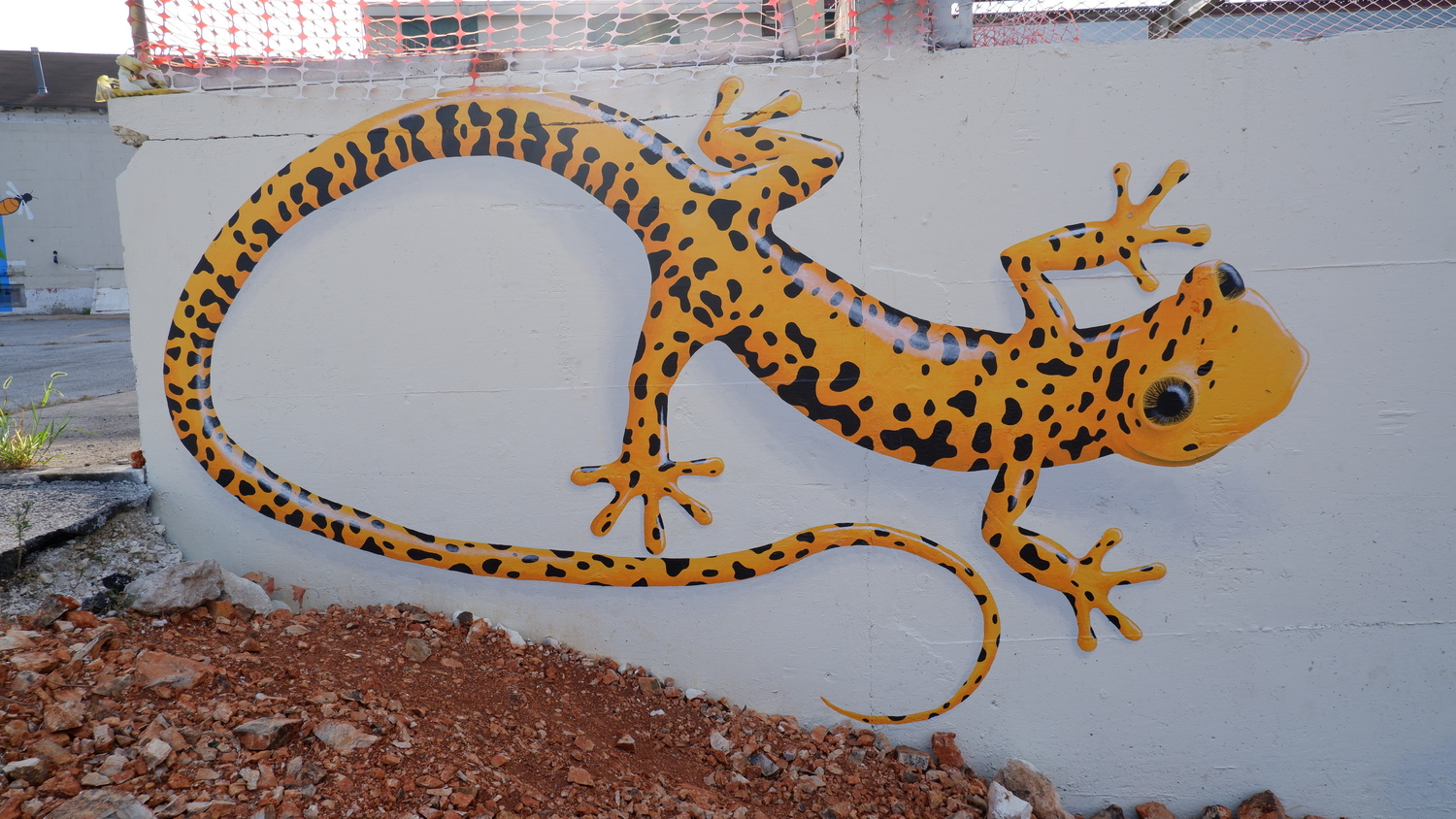 image of South Yard Geckos Mural