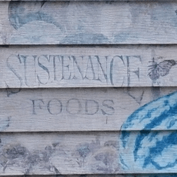 thumbnail of Sustenance Foods