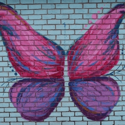 thumbnail of Games Shop Butterfly Mural
