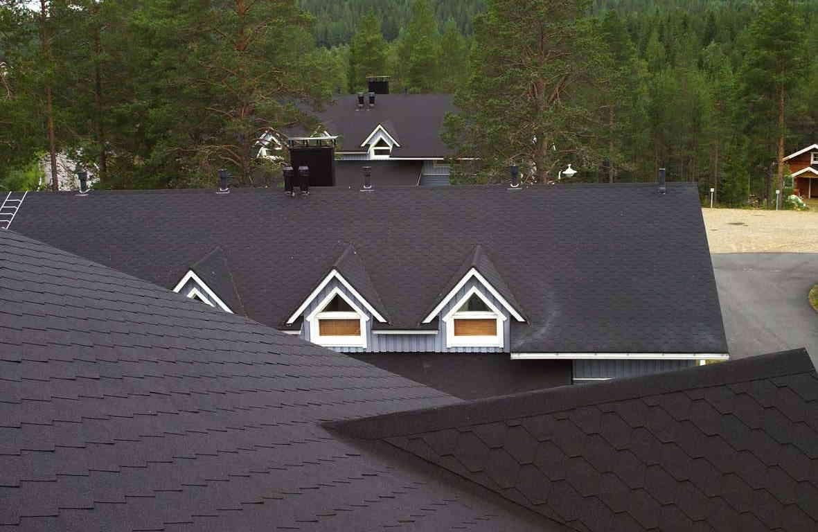 IMG - Plano Natur musta palahuopa kattolaatta maisema lähikuva katosta - 1181px / 768px