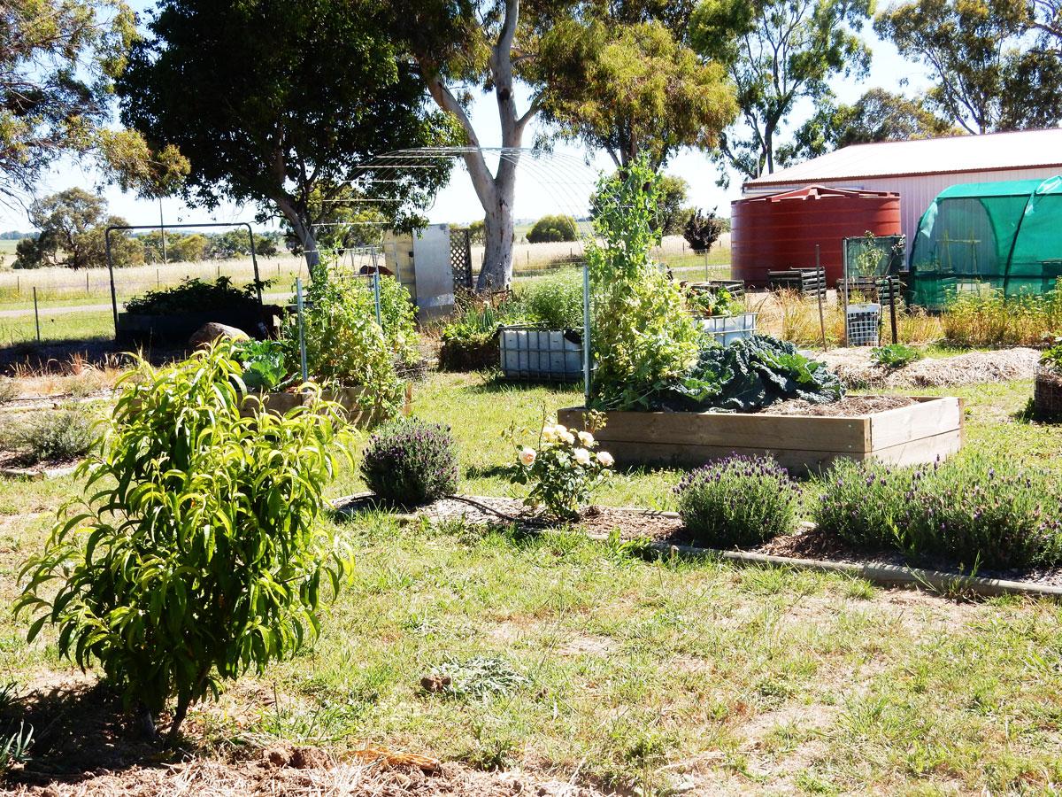 Boorowa Community Garden