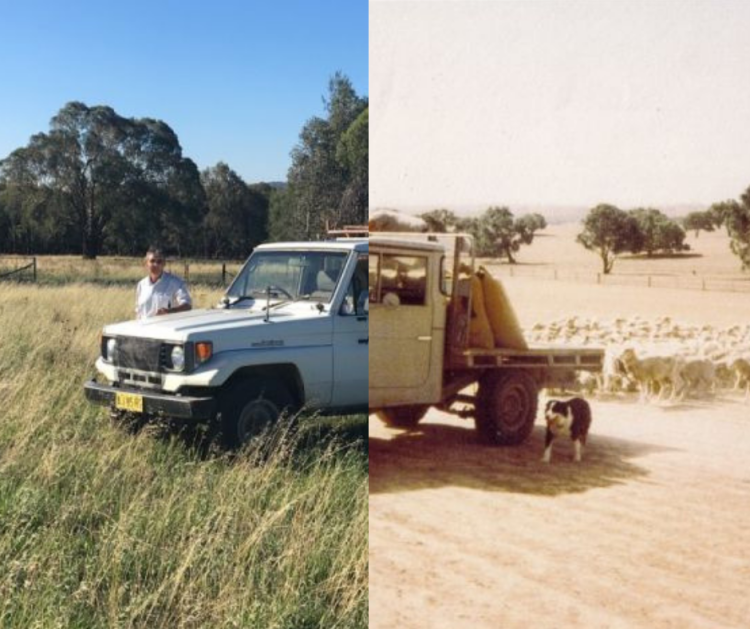 1982-2019, David Marsh's property  'Allendale'.