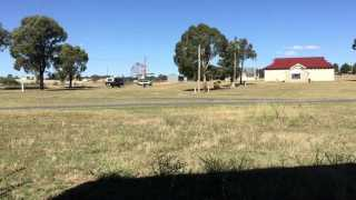 The Harden-Murrumburrah Showground