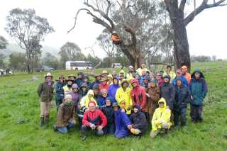 Boorowa landcare group