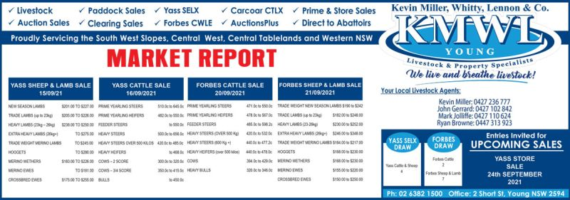 KMWL Market Report