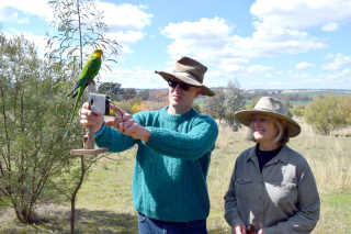 Damon Oliver from the Office of Environment and Heritage with LachLandcare's Mikla Lewis inspecting Superb Parrot habitat.