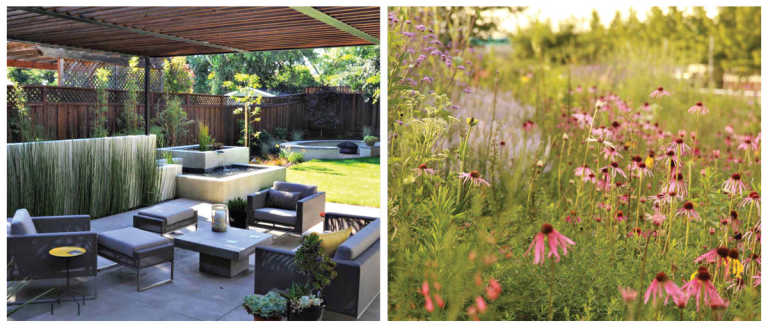 Modern and Naturalistic or Meadow/Prairie Style Gardens
