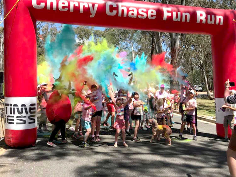 Last year's Cherry Chase