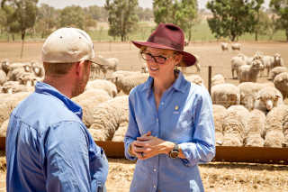 Steph Cooke and shearers
