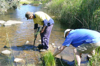 page5-Craig-Southwell-and-Geoff-Darnell-planting-diversity-within-Pudman-Creek