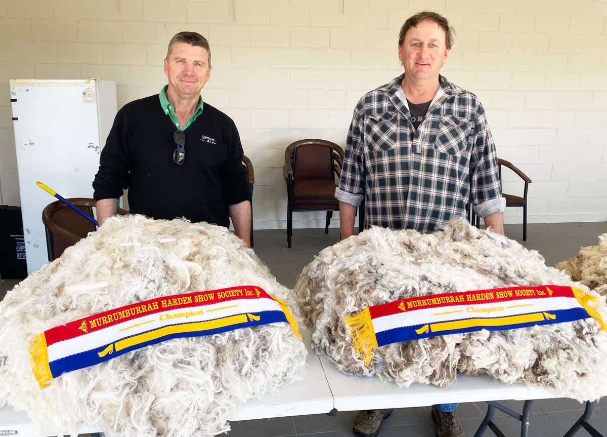 Champion wool exhibits.