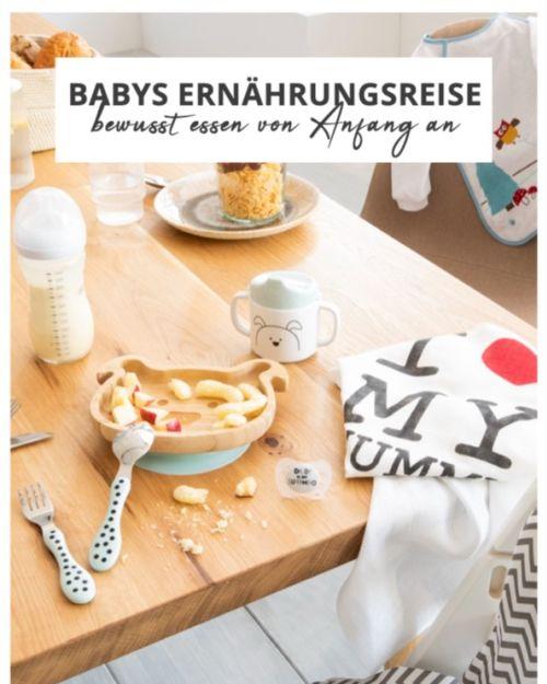 "Buchcover ""Babys Ernährungsreise"""