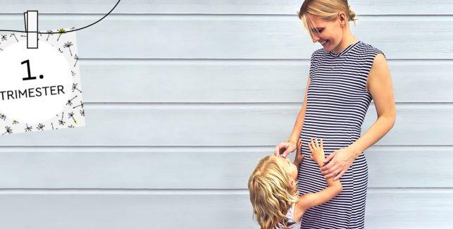Sissi mit Babybauch – Das erste Trimester
