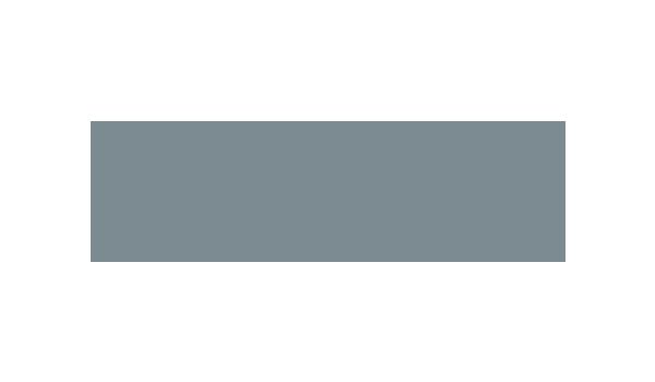 Snyder Langston