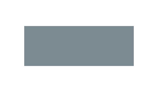 Brasfield & Gorrie logo - dark