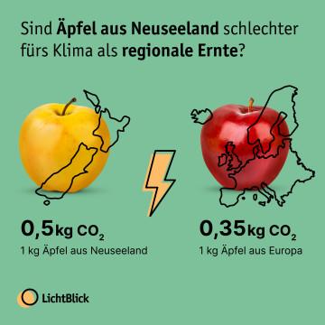 Apfel Schaubild