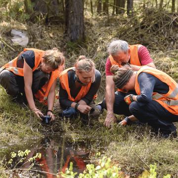 Gruppe von Menschen untersucht Waldboden