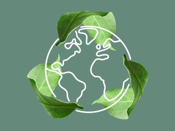 Weltkugel umgeben von Blättern