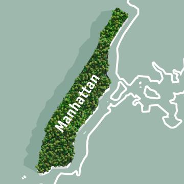 Illustration von Manhattan mit Regenwald